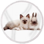 Perfectly Paired Pals Round Beach Towel
