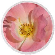 Perfectly Pink Round Beach Towel