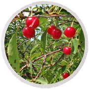 Perry's Cherry Image Round Beach Towel by Perry Andropolis