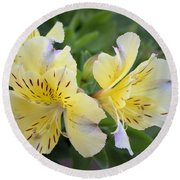 Round Beach Towel featuring the photograph Peruvian Lily 2 by Victor K