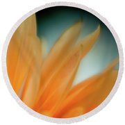 Round Beach Towel featuring the photograph Petal Disaray by Greg Nyquist