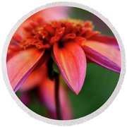 Petal Perfect Round Beach Towel by Sheila Ping