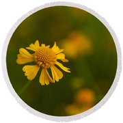 Petals Of Nature Round Beach Towel by Christopher L Thomley