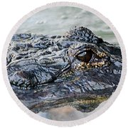 Pete The Alligator Round Beach Towel by Kenneth Albin