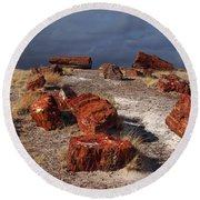 Round Beach Towel featuring the photograph Petrified Forest National Park by James Peterson