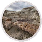 Round Beach Towel featuring the photograph Petrified Remains by Alan Toepfer