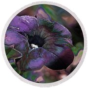 Petunia 1 Round Beach Towel by Stuart Turnbull