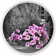Round Beach Towel featuring the photograph Petunias In Brooklyn Circa 2006 by Iowan Stone-Flowers