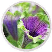 Round Beach Towel featuring the photograph Petunias Varigated by Larry Bishop