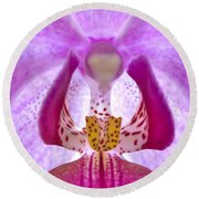 Phalaenopsis Orchid Round Beach Towel