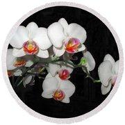 Phalaenopsis Orchids Round Beach Towel