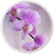 Phalaenopsis Schilleriana Fragrant Butterfly Orchid V2 Round Beach Towel