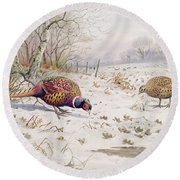 Pheasant And Partridge Eating  Round Beach Towel by Carl Donner