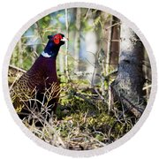Pheasant In The Forest Round Beach Towel
