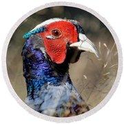 Pheasant Portrait Round Beach Towel