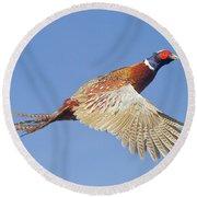 Pheasant Wings Round Beach Towel
