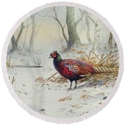 Pheasants In Snow Round Beach Towel by Carl Donner