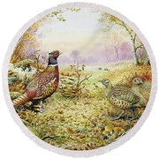 Pheasants In Woodland Round Beach Towel by Carl Donner