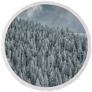Round Beach Towel featuring the photograph Winter Pines by Lou Novick