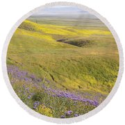 Round Beach Towel featuring the photograph Photographing Carrizo by Marc Crumpler