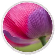 Poppy Close Up Round Beach Towel