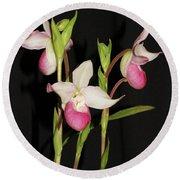 Phragmipedium Cardinale Wacousta Orchid Round Beach Towel