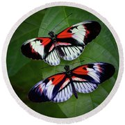 Piano Key Butterfly's Round Beach Towel