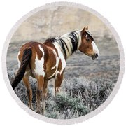 Picasso - Wild Mustang Stallion Of Sand Wash Basin Round Beach Towel by Nadja Rider