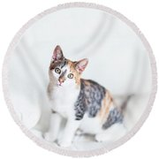 Picture Purfect Round Beach Towel
