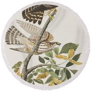 Pigeon Hawk Round Beach Towel by John James Audubon
