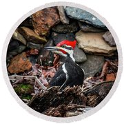 Pileated Pete Round Beach Towel
