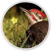 Pileated Woodpecker Round Beach Towel by Loni Collins
