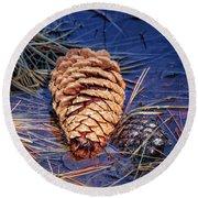 Pine Cone Round Beach Towel