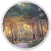 Pine Forest At Sunset Round Beach Towel
