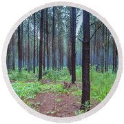 Round Beach Towel featuring the photograph Pine Grove And Fog In Charlotte Nc Panorama by Ranjay Mitra