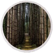 Pine Path  Round Beach Towel