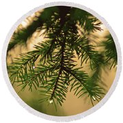 Round Beach Towel featuring the photograph Pine by Robert Geary
