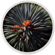 Pine Rose Round Beach Towel