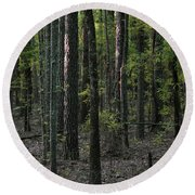 Round Beach Towel featuring the photograph Pine Wood Sunrise by Skip Willits