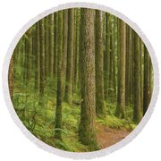 Pines Ferns And Moss Round Beach Towel