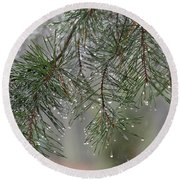 Pines Of Winter Round Beach Towel