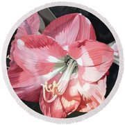 Round Beach Towel featuring the painting Pink Amaryllis by Laurie Rohner