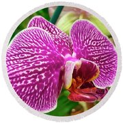 Pink And Green Orchid Floral Garden 957 Round Beach Towel