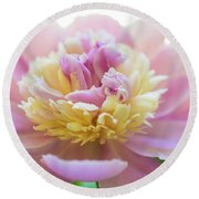 Pink And White Peony Round Beach Towel
