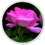 Round Beach Towel featuring the photograph Pink And White Rose 005 by George Bostian