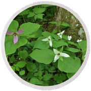 Pink And White Trillium Round Beach Towel