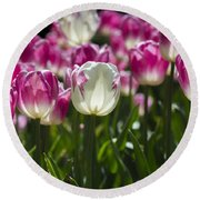 Round Beach Towel featuring the photograph Pink And White Tulips by Angela DeFrias