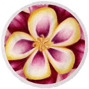 Pink And Yellow Columbine Flower Drawing Round Beach Towel