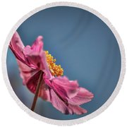 Pink And Yellow Profile #h8 Round Beach Towel