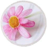 Round Beach Towel featuring the photograph Pink Aster Flower II by Nick Biemans
